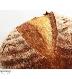 MONASOURDOUG BREAD